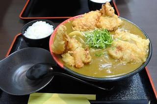 ライス付き鶏天カレーうどんランチ「Ah-麺(あーめん)」JR寺田町駅